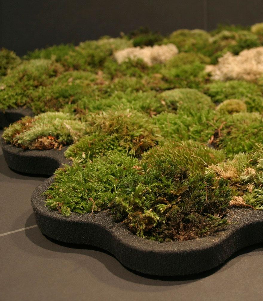 Ideas ecológicas (1)