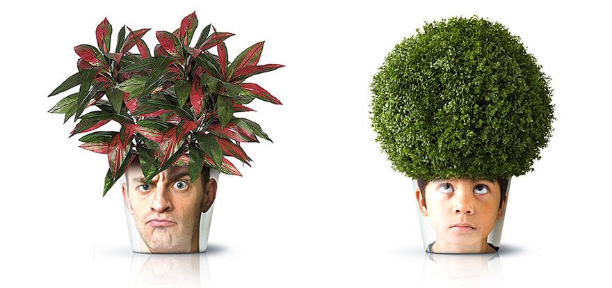 Ideas ecológicas (12)