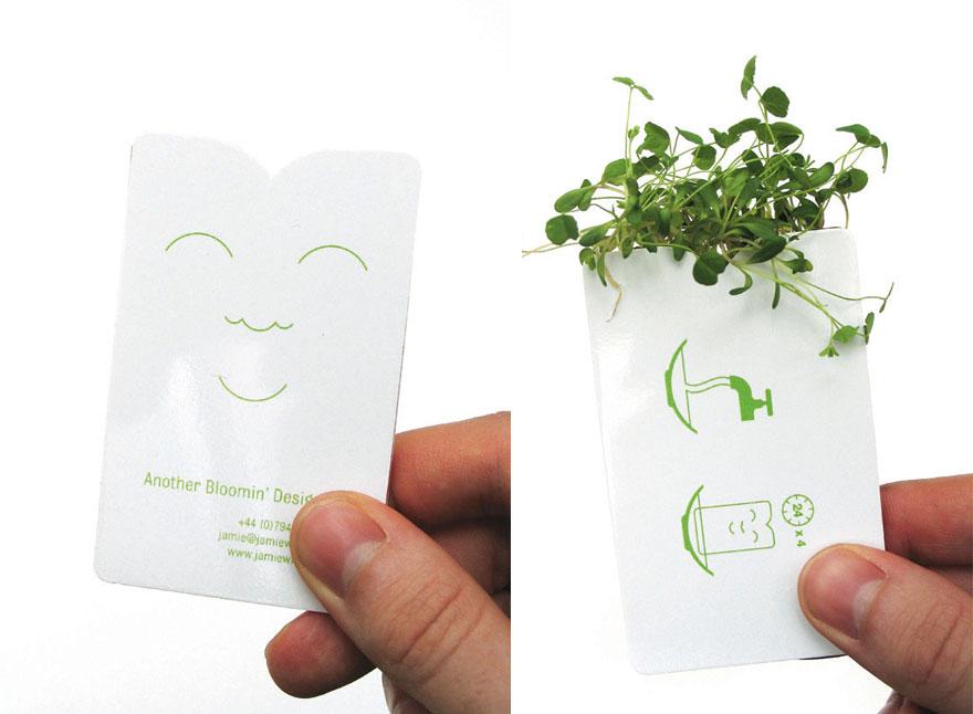 Ideas ecológicas (19)