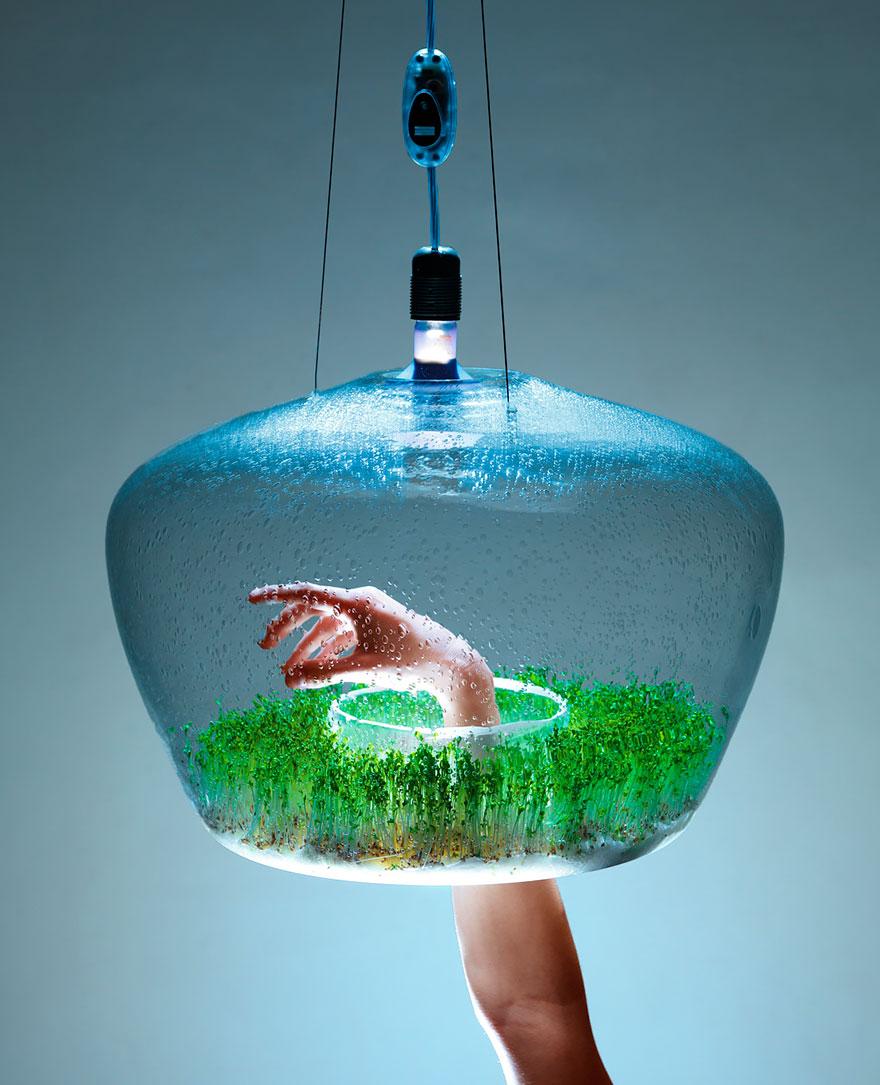 Ideas ecológicas (2)