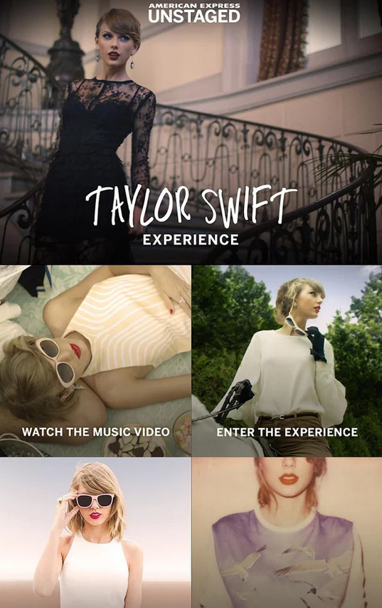 Taylor Swift Experience (2)
