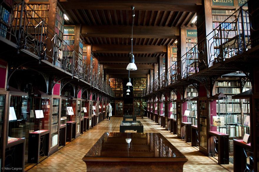 Bibliotecas (41)