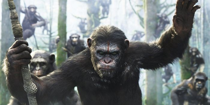Dawn-of-the-Planet-of-the-Apes-Reviews-starring-Andy-Serkis-and-Gary-Oldman