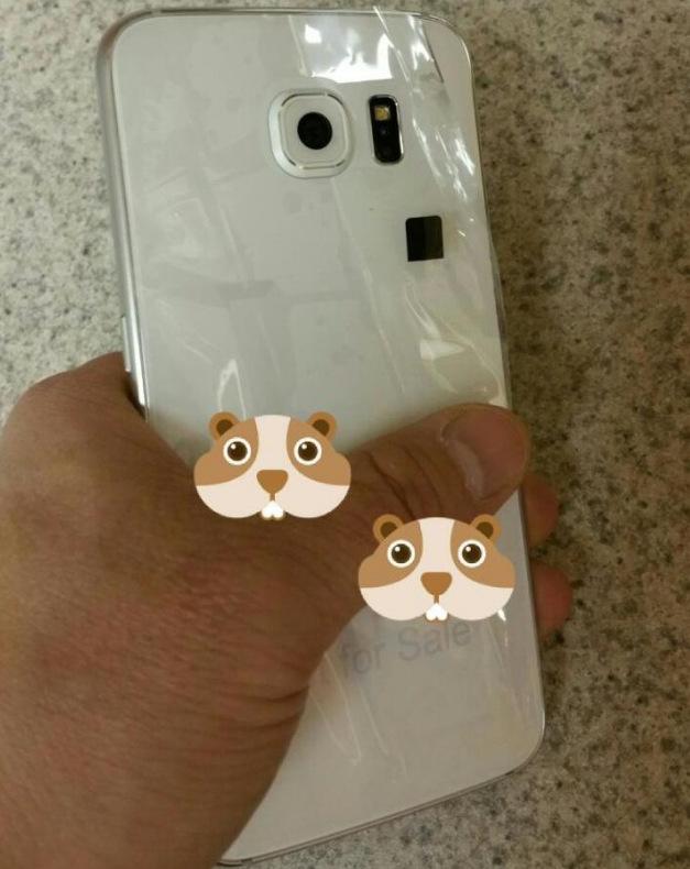 Galaxy S6 (14)