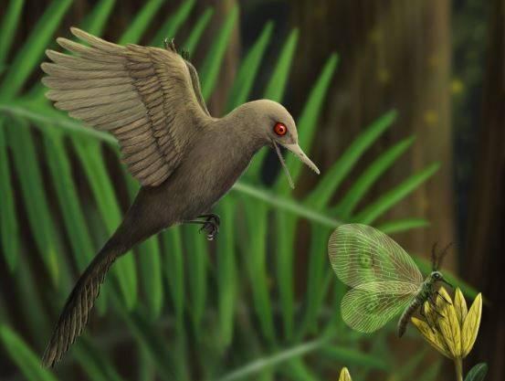 Nueva-especie-de-dinosaurio-diminuto
