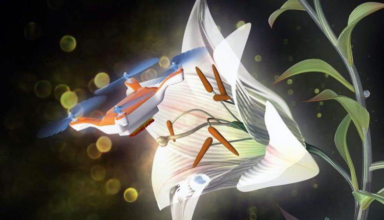 Drone_flower_pollinator_Springwise