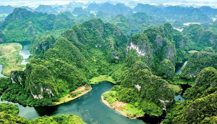 escuchar-bosques-tropicales-cascos