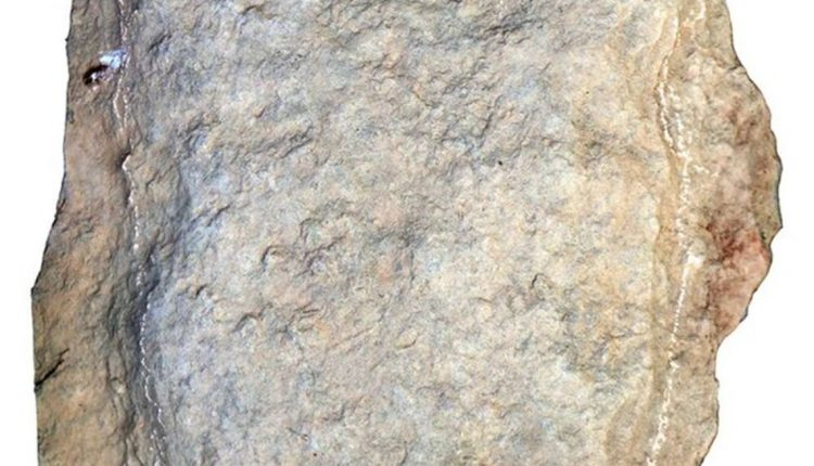 huella-estegosaurio